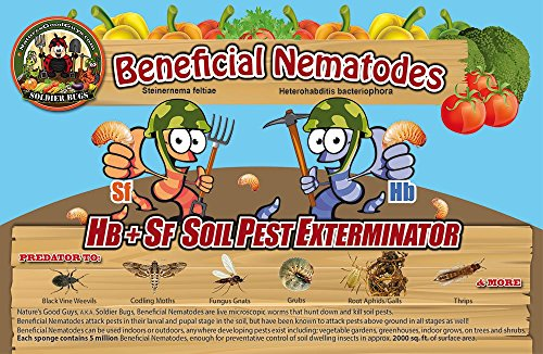 25-million-live-beneficial-nematodes-hb-sf-kills-over-200-different-species-of-soil-dwelling-and-woo