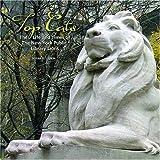 Top Cats, Susan G. Larkin, 0764937626