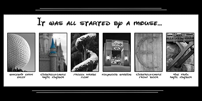 Amazoncom It Was All Started By A Mouse Walt Disney World