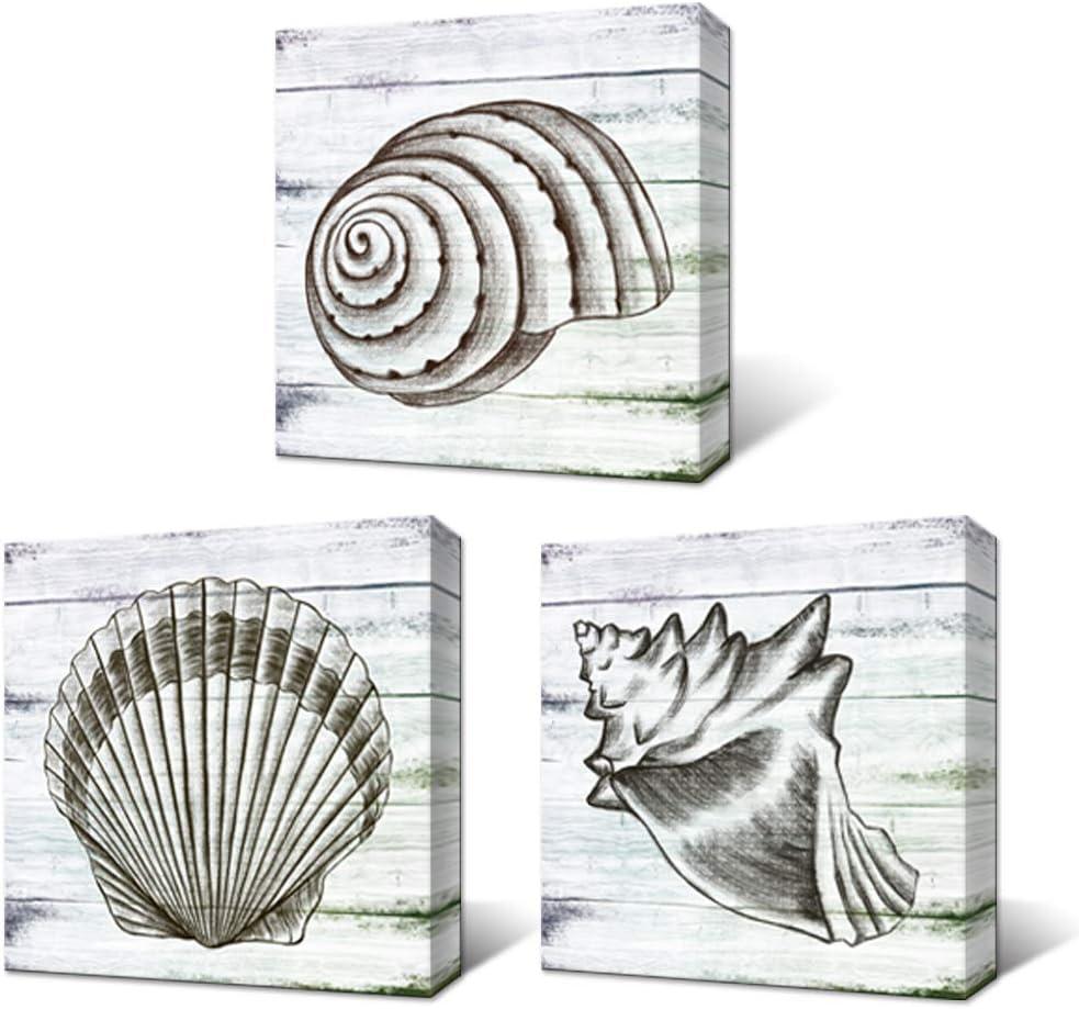 LoveHouse 3 PCS Black and White Shell Wall Art Coastal Beach Canvas Printing Seashell Painting Nautical Wall Decor Seashore Artwork on Wooden Background for Bathroom Hotel Stretched 12x12inchx3pcs