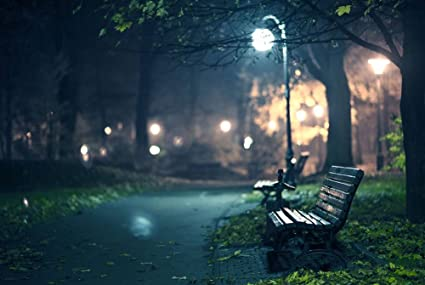 Amazon Com Park Bench Path Lights Night Glare Natural Scenery Art
