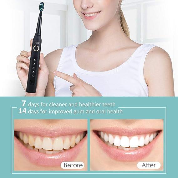Seago SG-507 USB cepillo de dientes eléctrico recargable adulto impermeable cepillo de dientes de limpieza profunda con 2 cabezas de repuesto: Amazon.es: ...