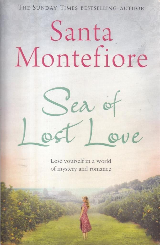 Sea of Lost Love pdf
