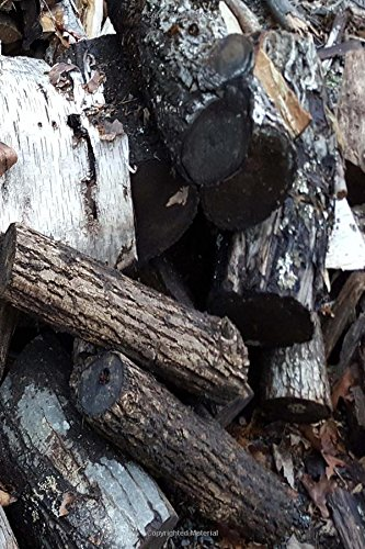 Download Journal Woodpile Fallen Over: (Notebook, Diary, Blank Book) (Photo Cover Journals Notebooks Diaries) pdf epub