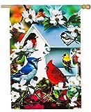 Evergreen Bird Houses