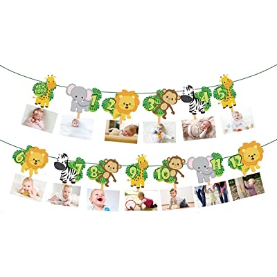 Safari Jungle Animal 1st Birthday Photo Banner Newborn to 12 Month Display Milestone Wild One Safari Forest Animal Themed First Year Baby Banner for Birthday Party Photo Booth Decorations Supplies: Toys & Games