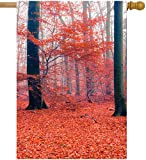 Cheap ShineSnow Forest Autumn Red Tree Fall Leaves Seasonal Landscape House Flag 28″ x 40″ Double Sided Polyester Welcome Yard Garden Flag Banners for Patio Lawn Outdoor Home Decor