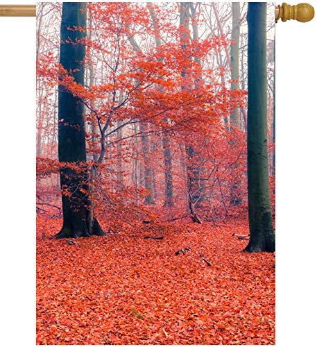 ShineSnow Forest Autumn Red Tree Fall Leaves Seasonal Landscape House Flag 28