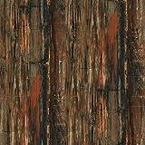 Formica Brand Laminate 034741246512000 Petrified Wood Laminate, Petrified Wood Etchings
