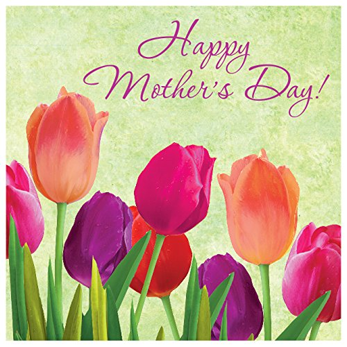Creative Converting 16 Count Paper Spring in Bloom Mothers Day Lunch Napkins, - Usa Mother Day