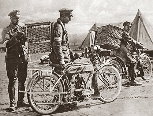 Wwi Carrier Pigeons Nbritish Motorcyclists Taking Carrier Pigeons To Front Line Trenches During World War I Photograph C1916 Poster Print by (18 x 24)