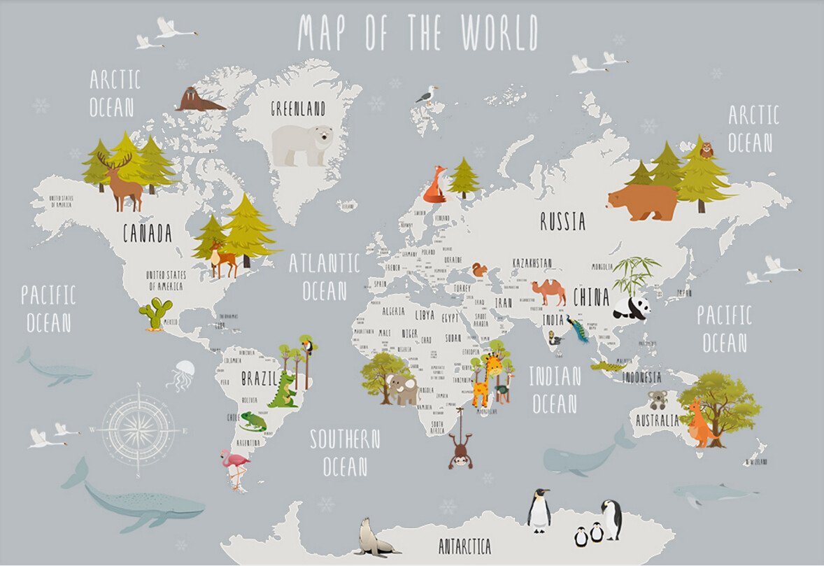 Wall Murals 3D Wallpaper Cartoon World Map Grey Background ... on vector map indonesia, tv indonesia, travel map indonesia, satellite indonesia, map with physical features of indonesia,