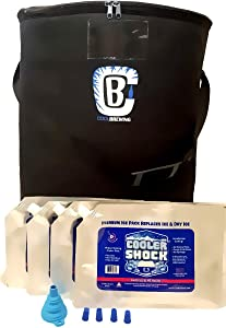 Fermentation Cooler 2.0 version for Home Brewing, Bundle with 4x Large Cooler Shock Ice Packs - Beer Brewing Temperature Control, Keg Cooler, Brewing Bag by Cool Brewing