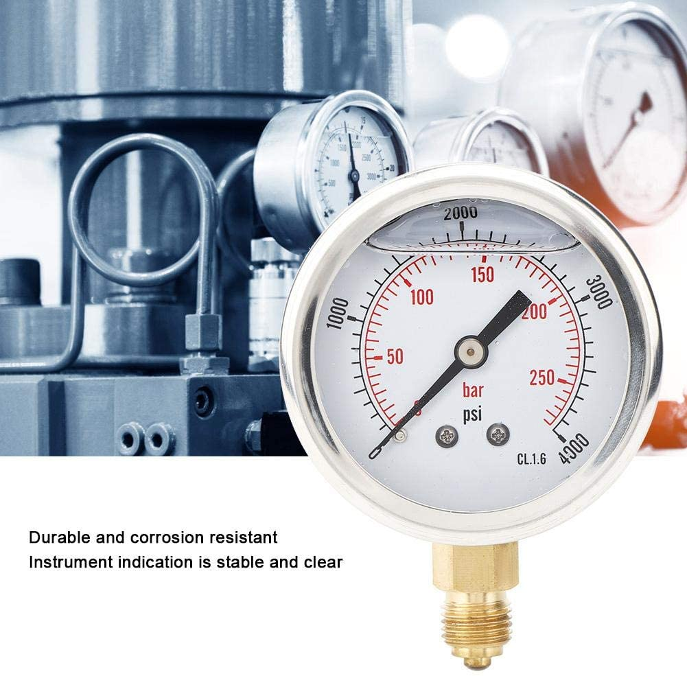 Mining Oil Filled TS-PGG604-250bar High Presision Radial Pressure Gauge 1//4BSP Y60 Durable for Chemical Industry for Metallurgy