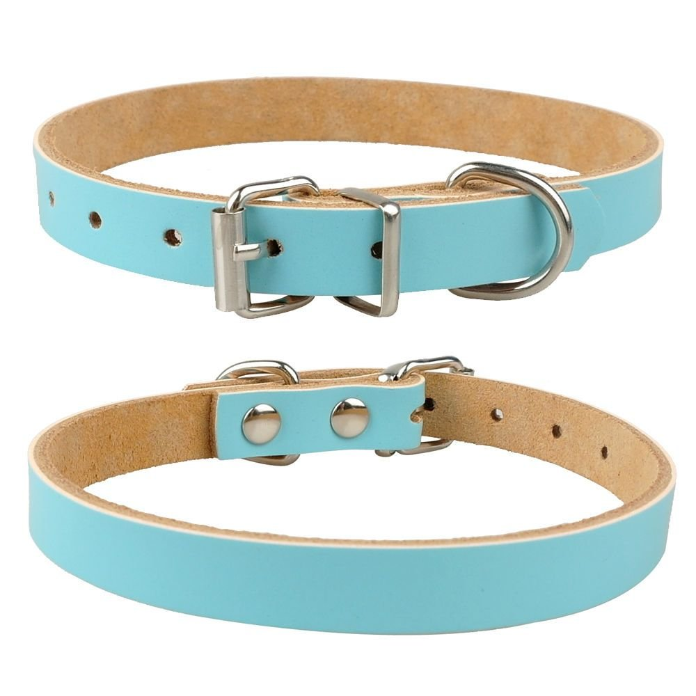 ivisi DEEP Etch Personalized Dog Cat Leather Engraved Collar 4 Sizes Several Colors