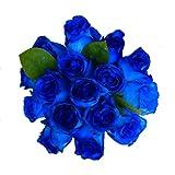 2 Dozen Farm Fresh Blue Roses Bouquet By JustFreshRoses | Long Stem Fresh Blue Rose Delivery | Farm Fresh Flowers