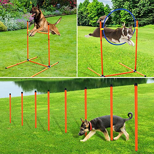 XiaZ Dog Agility Course Equipments, Obstacle Agility ...