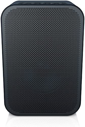 Bluesound PULSE FLEX Portable Wireless Multi-room Smart Speaker with Bluetooth – Black
