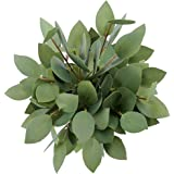 Greentime 8 Pack Artificial Greenery Stems Faux 13 Inches Greenery Eucalyptus Heart-Shaped Leaves for Bridal Wedding…