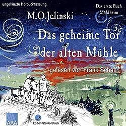 Das geheime Tor der alten Mühle (Das Buch Mühlheim 1)