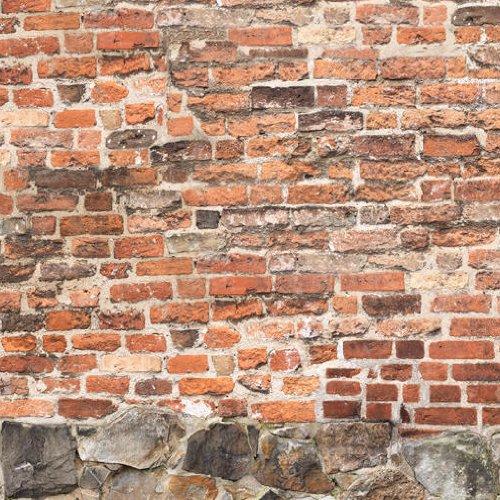 61sHcgEyboL - Tapete Mauer