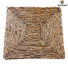 SunGrow Natural Seagrass Edible chew mat for Rabbits, Chinchillas, Guinea Pigs and Rodents by Ideal as Bed for Extra Comfort - Pet Loves chomping, Gnawing and Digging on Hand-Woven Sturdy Grass mat