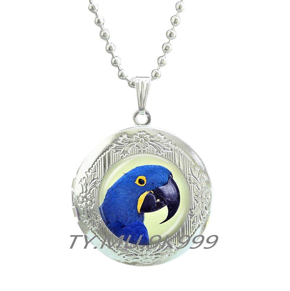 Yao0dianxku Blue Parrot Locket Necklace Tropical Bird Locket Necklace Tropical Parrot Jewelry Tropical Blue Jewelry Blue Bird Locket Necklace Exotic Bird Locket Necklace Gift.Y059