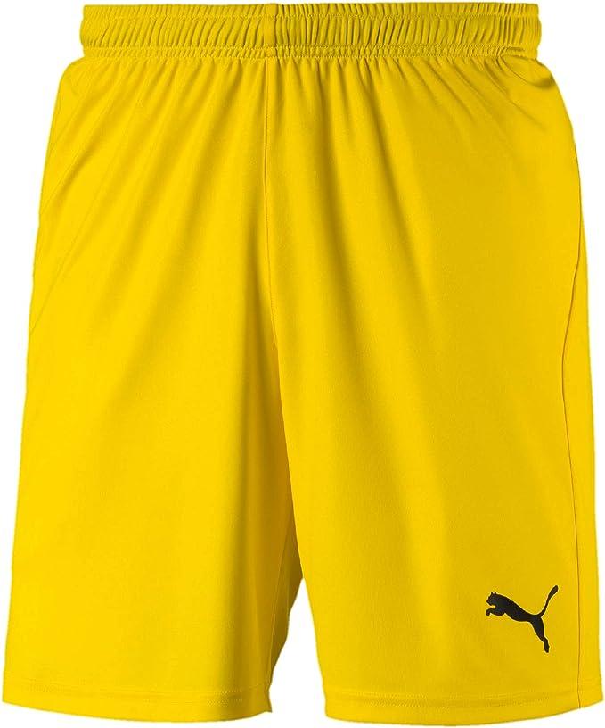 Puma Herren Shorts Sporthose Kurzhose Bermuda Sport Hose Fußball 008