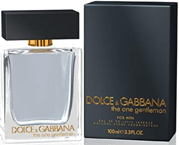 dolce gabbana the one gentleman