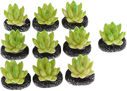 Miniature Artificial Succulents Plants 1//12 Dolls House Decoration Accessory