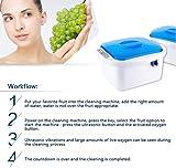 SDRFSWE Ultrasonic Ozone Cleaner Vegetable and