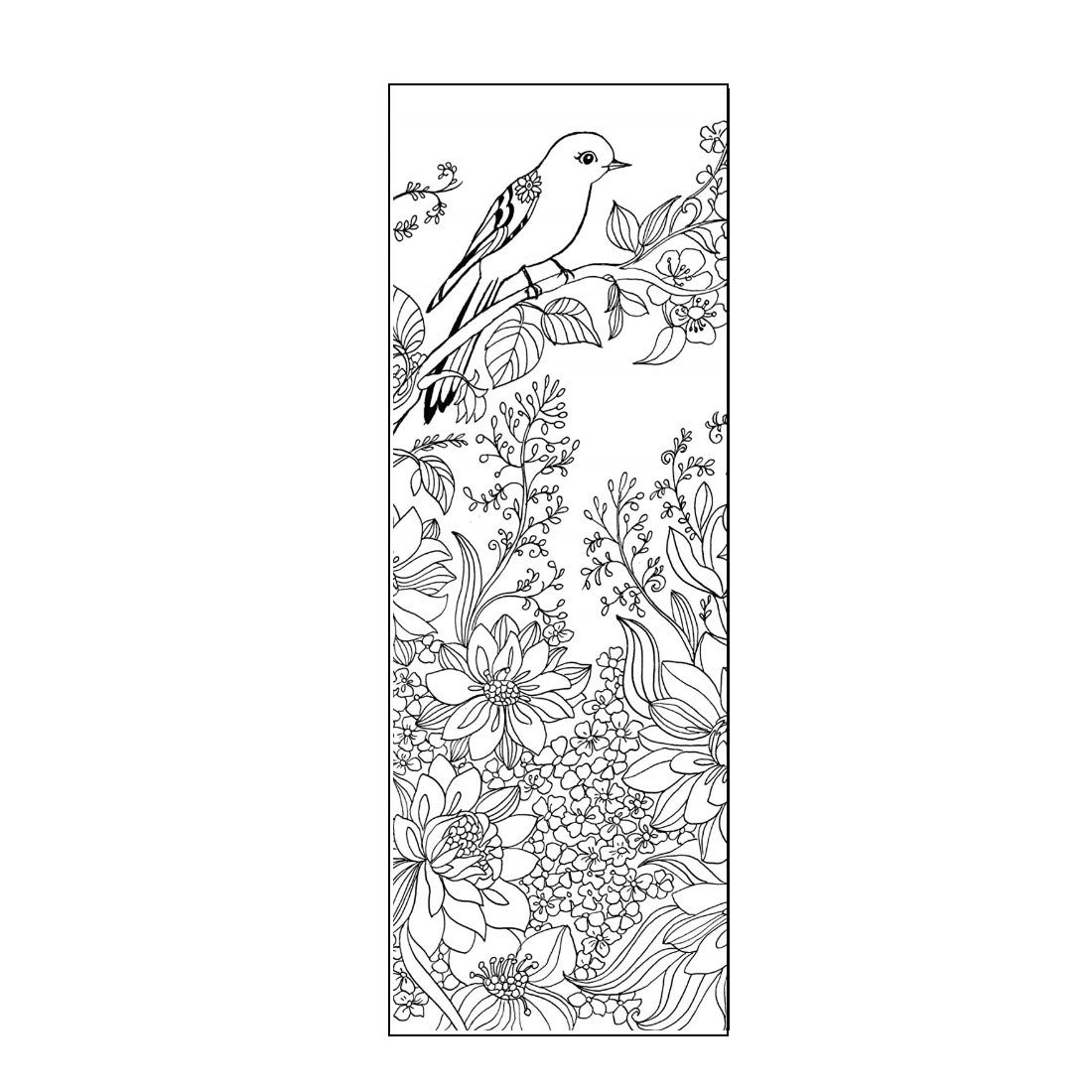Amazon Com Beautiful Birds Color Your Own Bookmarks Anti