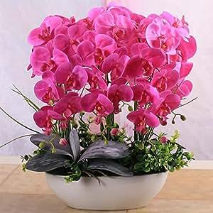Alta simulación de baño de flores Phalaenopsis salón de decoración de interiores flores artificiales en maceta 10 semillas