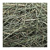 Small Pet Select Orchard Grass Hay Pet Food, 20 lb.