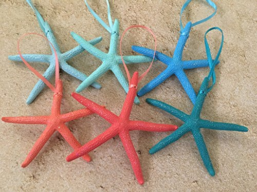 61sIaCTErsL Amazing Starfish Christmas Ornaments