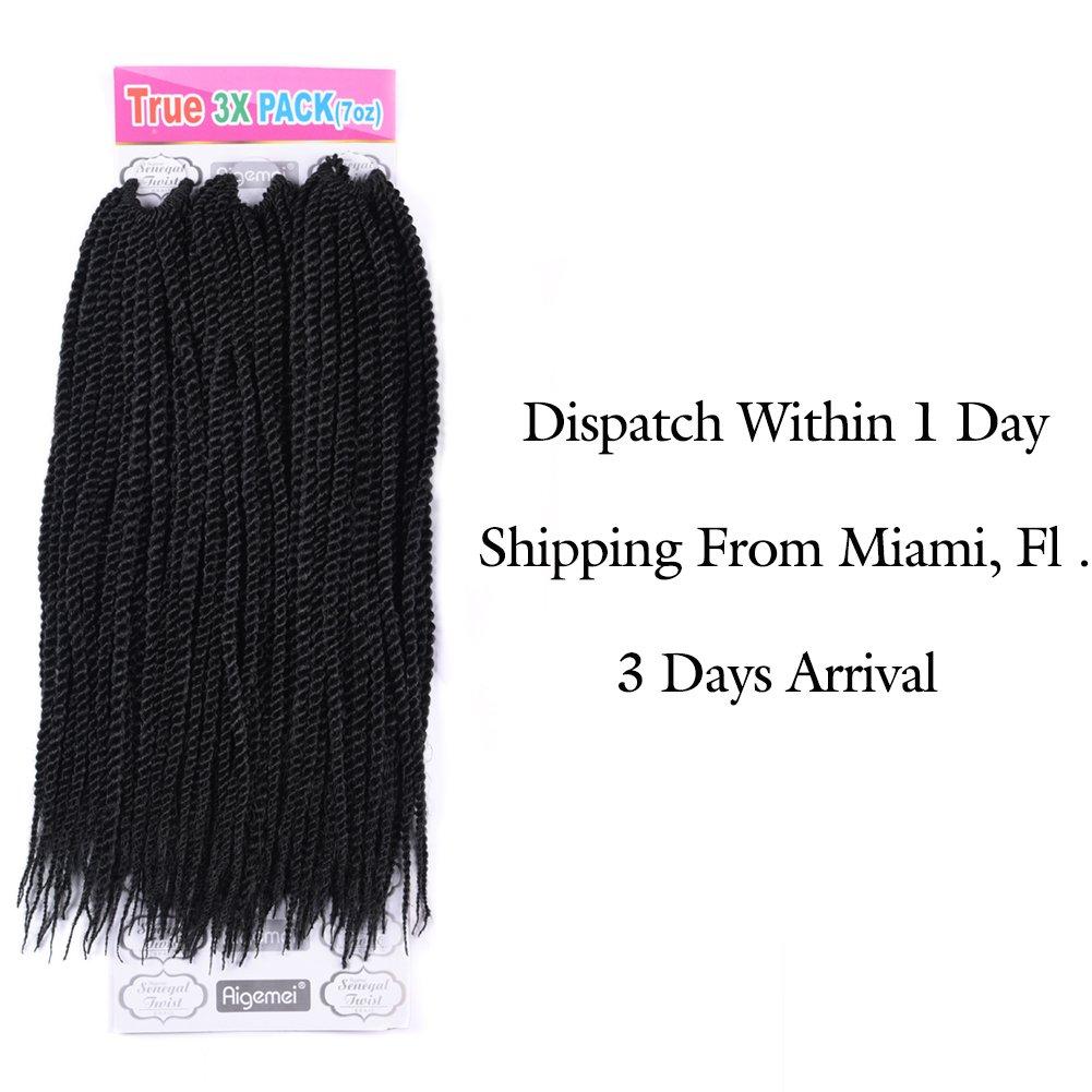 Amazon.com : Senegalese Twist Hair Crochet Braids Hairstyles 2S ...