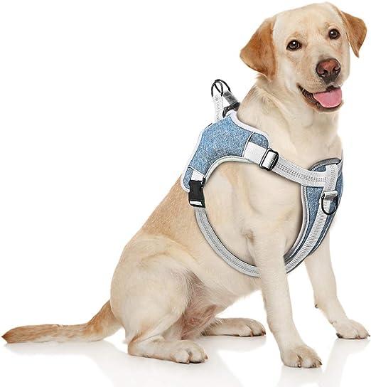 TAMOWA Arnés Perro Ajustable, Arnés Perro Grande Mediano Pequeño Cómodo Transpirable y con Lineas Reflectantes, Arnés para Perro para Caminar Entrenamiento (Azul, S): Amazon.es: Productos para mascotas