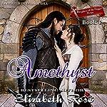 Amethyst: Daughters of the Dagger Series, Book 4 | Elizabeth Rose