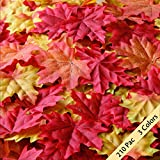 Package of 210 Maple Leaf Assorted Mixed Fall Colored Silk for Weddings Decorations or Christmas party by Bassion