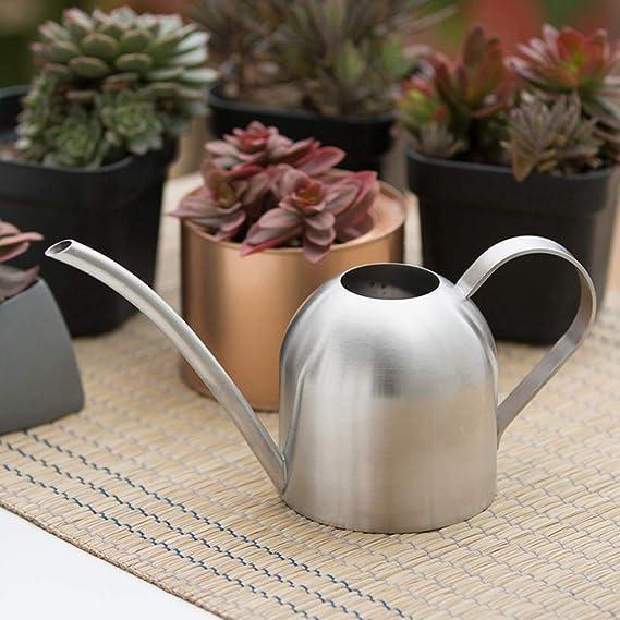 Arrosage Can1.5L long bec arrosage bouilloire arrosoir pour lint/érieur plastique en plein air fort pour larrosage int/érieur et ext/érieur Plantes et fleurs en pot 1pc gris clair