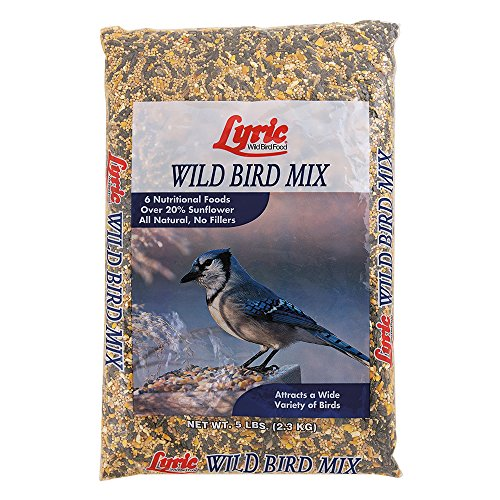 Lyric Wild Bird Mix - 5 lb. bag (Shelled Safflower Bird Seed)