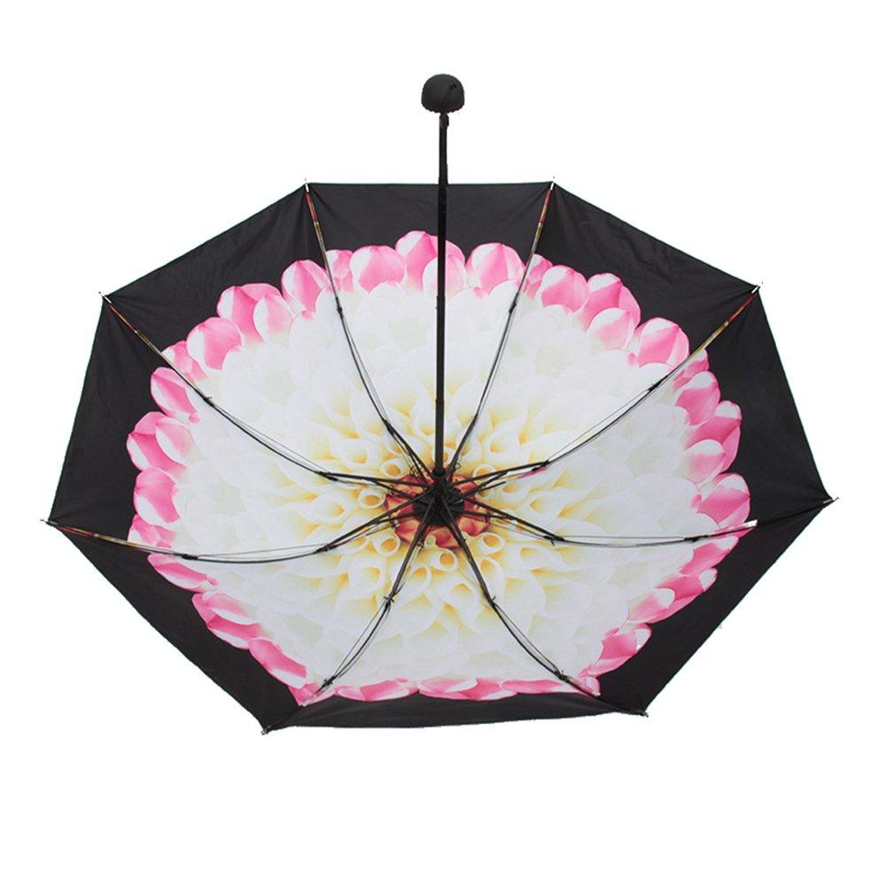 Encoco Sun pluie Parapluie, Voyage protection UV Parapluie, compact, Art Parapluie pliable, coupe-vent Parapluie