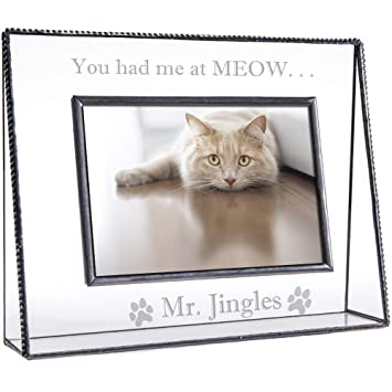 Amazoncom J Devlin Pic 319 46h Ep593 Personalized Cat Picture