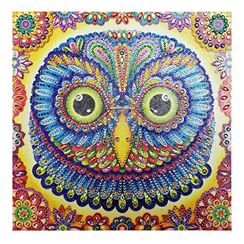 DIY 5d Diamond Painting Kit, Plane Wall Sticker Partial Drill Animal Owl Embroidery Rhinestone Cross Stitch Arts Craft for Canvas Wall Decor(A, 30 X 30 cm)