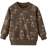 HUAER & Baby Boy Round Neck Cotton Long Sleeve Pullover Sweatshirt (1-Pack 2-Pack)