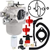 HOOAI 594593 Carburetor for 591731 593514 697141 697190 698445 699109 699937 791858 791888 792171 792358 793224 790418…