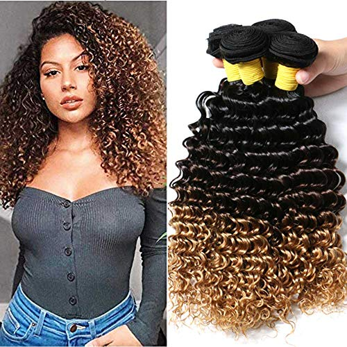Hairitory Ombre Deep Wave 3 Bundles Peruvian Virgin Human Hair 3 Tone Ombre Deep Curly Weave Hair Extensions 100g/PC(18 20 22, - Indian Remy Weave