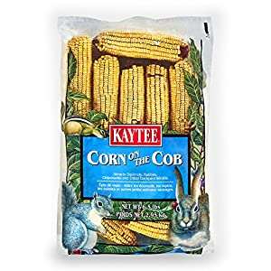 Kaytee Corn On A Cob 6.5 Pounds, Corn on The Cob