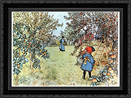 The Apple Harvest 24x18 Black Ornate Wood Framed Canvas Art by Carl Larsson