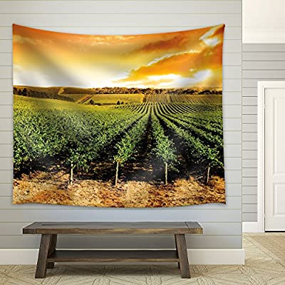 Charming Expertise, Sun Setting Over a Winery That is Filled with Vines, Quality Artwork